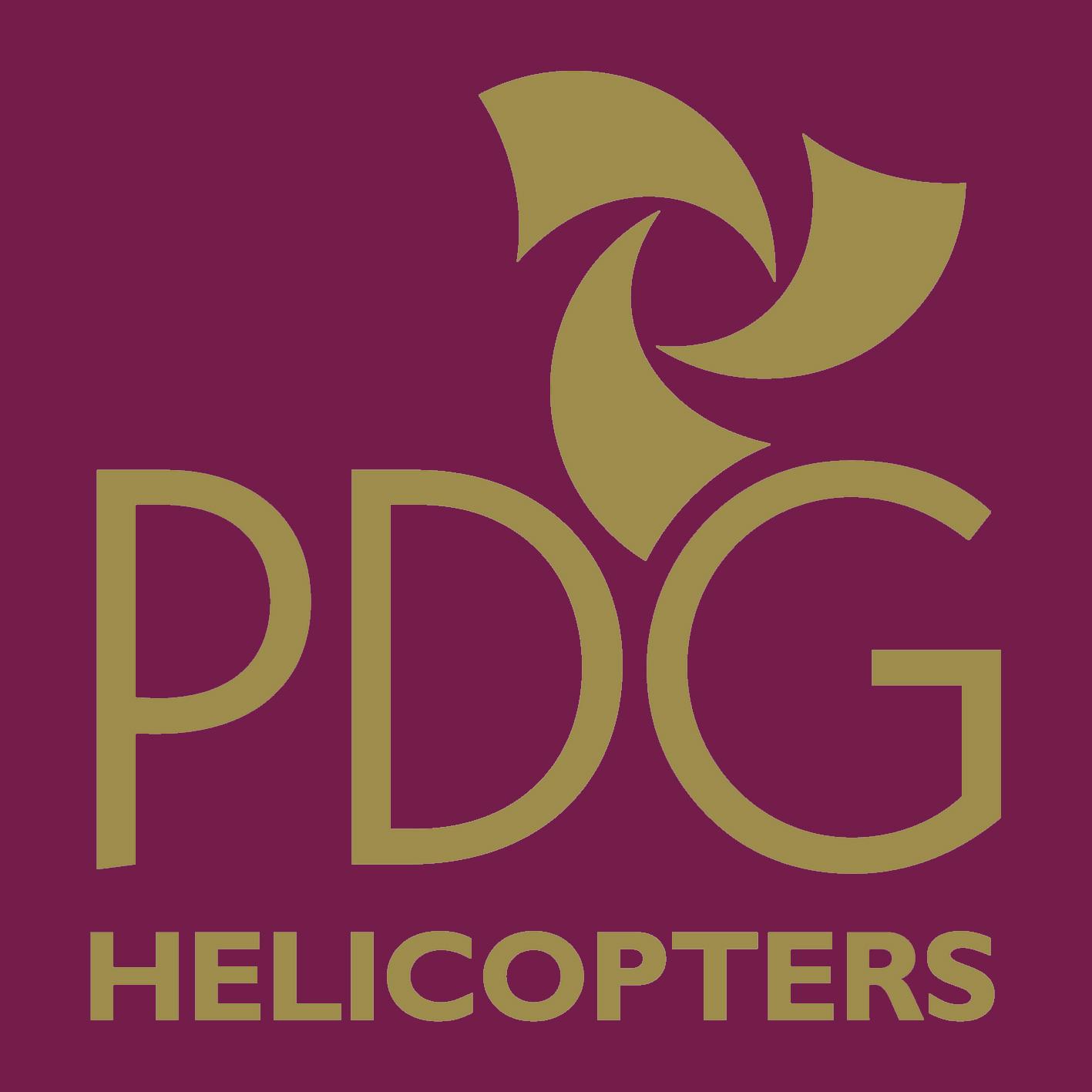 PDG_222 (1)